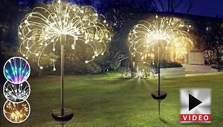 Solar Powered Firework Lights - 3 Sizes & 3 Colours